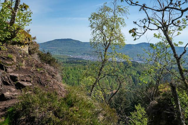Premiumwanderweg Murgleiter | Etappe 1 von Gaggenau nach Gernsbach | Wandern nördlicher Schwarzwald 16
