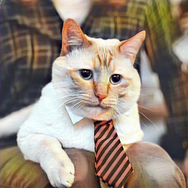 Gato con corbata en la oficina