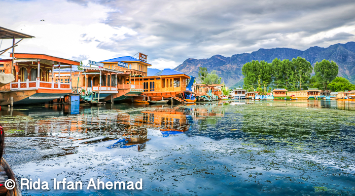*Srinagar* :  On my drive from the airport to Dal Lake, I witnessed a lot of security everywhere. My advice would be, please don't be intimidated by the policeman and soldiers that you see at every nook and corner. It is to help keep the tourists and civilians secure.     I enjoyed every bit of my drive as the place isn't very crowded and so scenic.After a rather nice ride, we finally arrived at the pulse of the city, Dal Lake and we hopped onto the Shikara and were taken to our houseboat,which was going to be our accommodation for a lovely twelve days.    The main and must visit places are the three Mughal Gardens namely - Chashmeshahi ,Shalimar Bagh and Nishat Bagh. These gardens are known for their dainty fountains, signature canals and blossoming flowerbeds. One can't help but get lost in its beauty.