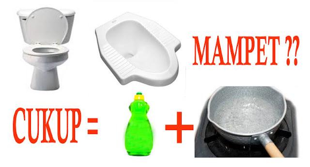 Cara Mengatasi WC Mampet Tanpa Disedot