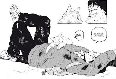 Walking cat - une belle relation se crée entre Jin et Yuki
