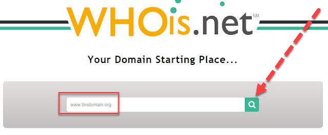 check tuổi domain