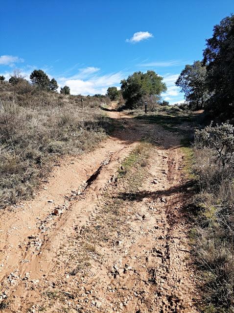 ruta de los quejigares brihuega