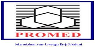 Lowongan Kerja PT Promedrahardjo Farmasi Industri Sukabumi