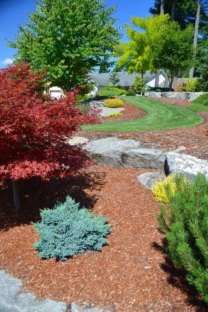 Low Maintenance Garden Design: Pics Actually: Low Maintenance Landscaping Ideas