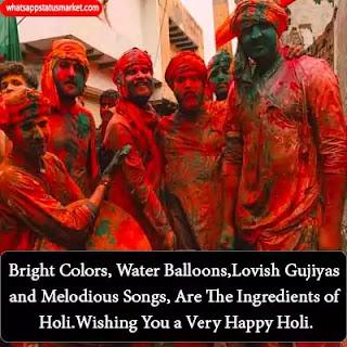 Happy Holi shayari image in english