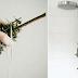 Muchas personas cuelgan un EUCALIPTO en la ducha, después de saber por qué lo harás siempre!