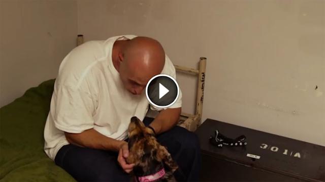 Έβαλαν έναν σκύλο στο κελί ενός φυλακισμένου και άρχισαν να βιντεοσκοπούν. Δείτε το βίντεο που έχει συγκλονίσει όλο τον πλανήτη