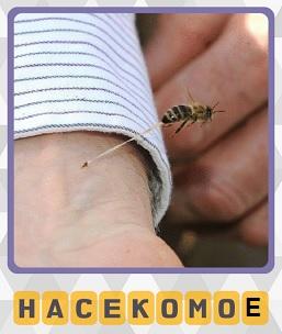 насекомое укусило человека в руку и оставила след от укуса