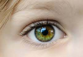 eye health tips, eye care tips
