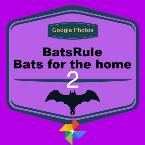 Bats for the Home2