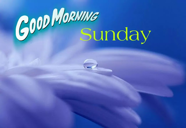 Good morning happy sunday photos