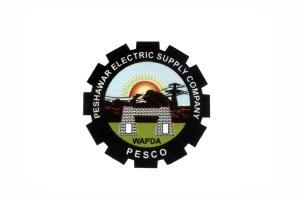 Peshawar Electric Supply Company PESCO Jobs Head of Internal Audit