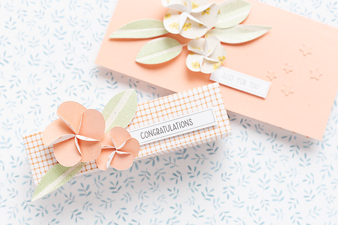 Gift boxes and cards with Frangipane Flower Die and Treat Holder Die by Moda Scrap Mojosanti