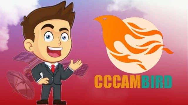 CCcamBird افضل مولد cccam مجاني - cccambird 48h