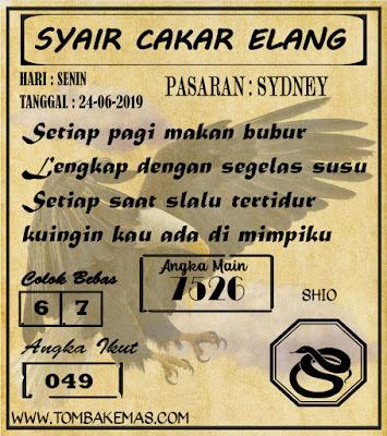 SYAIR SYDNEY 24-06-2019