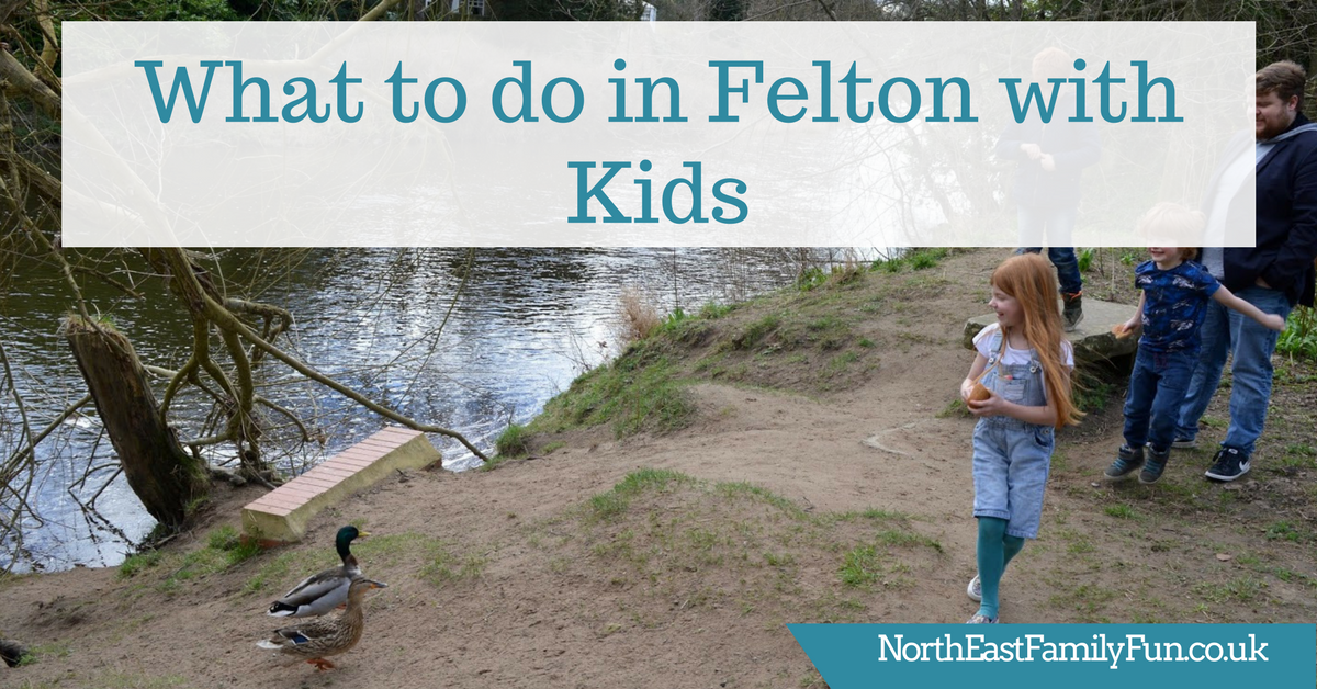 What to do in Felton, Northumberland - 5 reasons to visit with kids