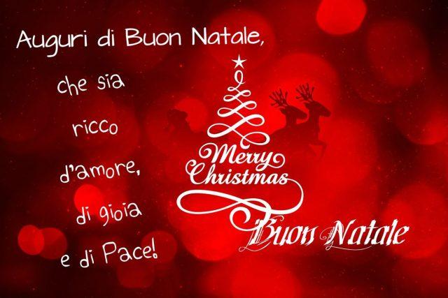 Alda Merini Buon Natale.Lo Scaffale Di Lucia Alda Merini Buon Natale
