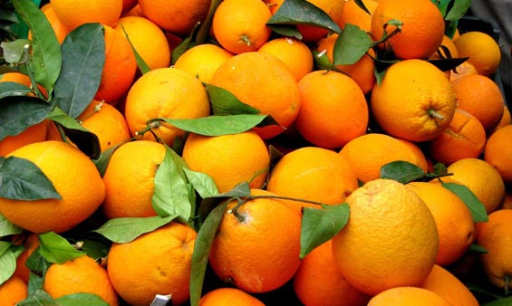 """Αργολίδα: Η ζήτηση για το πορτοκάλι """"ζεστάθηκε"""""""
