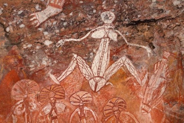 povo formiga australia