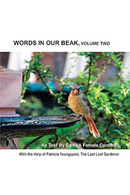 """This picture features the front cover of volume two of my book series, """"Words In Our Beak."""" It shows a female cardinal atop a brown colored metal saucer on a stand in my garden. Green foliage can be seen in the background. She appears to be looking straight into the camera and is most likely at ease because her crest is down. Info re this volume is in a press release that can be read via another post on this blog @ https://www.thelastleafgardener.com/p/blog-page_10.html"""