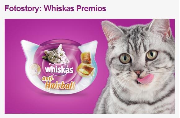 muestra gratis pienso gatos