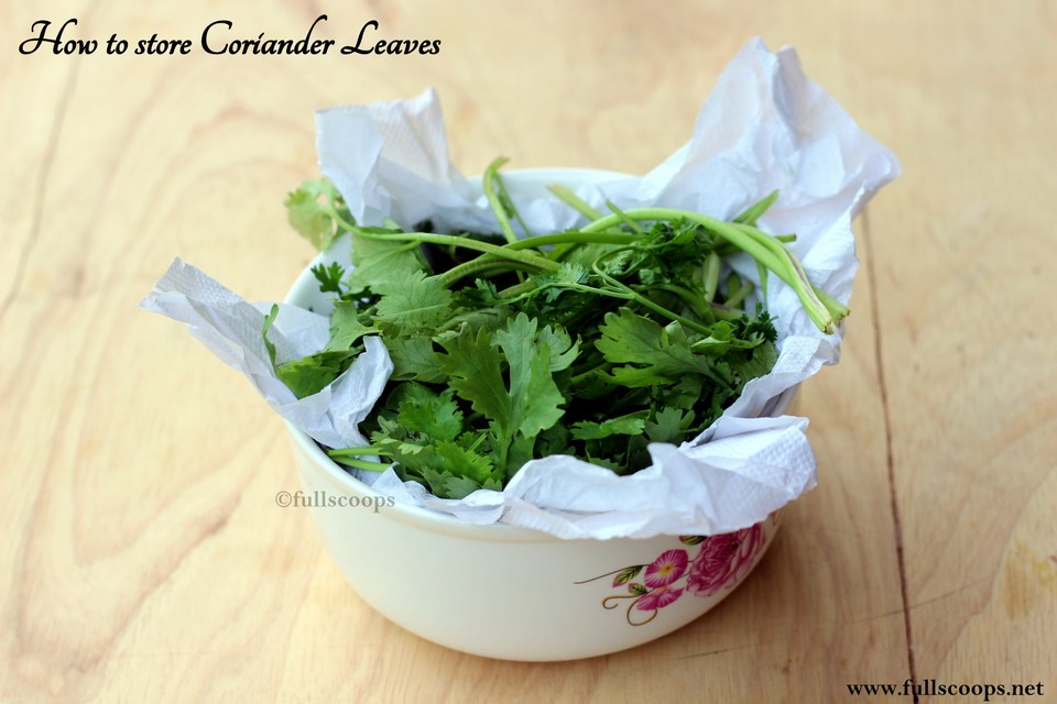 how to store coriander curry leaves and mint for long full scoops a food blog with easy. Black Bedroom Furniture Sets. Home Design Ideas