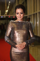 Actress Catherine Tresa in Golden Skin Tight Backless Gown at Gautam Nanda music launchi ~ Exclusive Celebrities Galleries 070.JPG