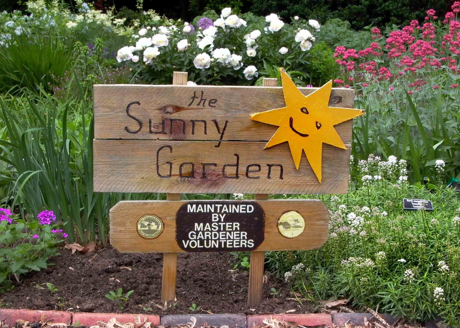 All about gardening: Tips for Fresh Gardeners: The Right Amount of ...