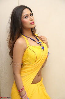 Nishigandha in Yellow backless Strapless Choli and Half Saree Spicy Pics 092.JPG