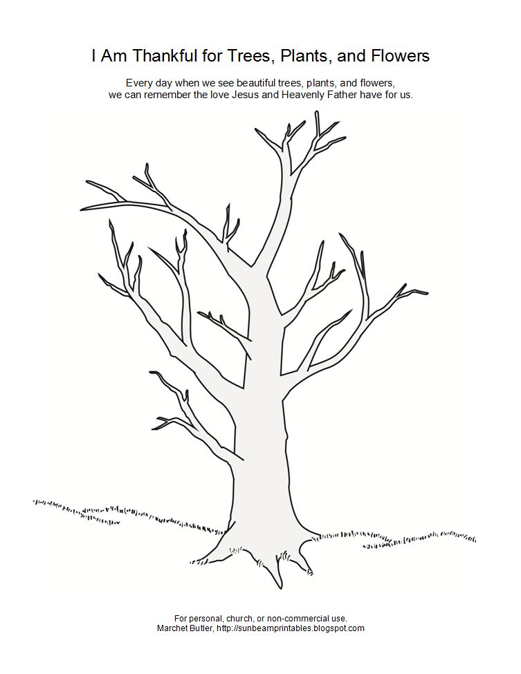 thanksgiving tree coloring pages - photo#9