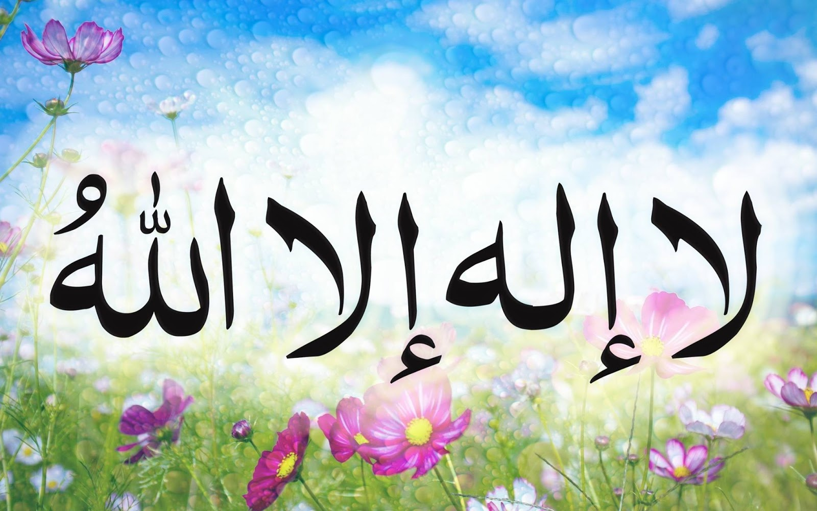 La Ilaha Illallah Hd Wallpapers Free Islamic Wallpapers