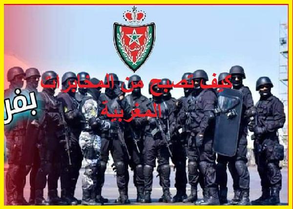 كيف تصبح من المخابرات المغربية