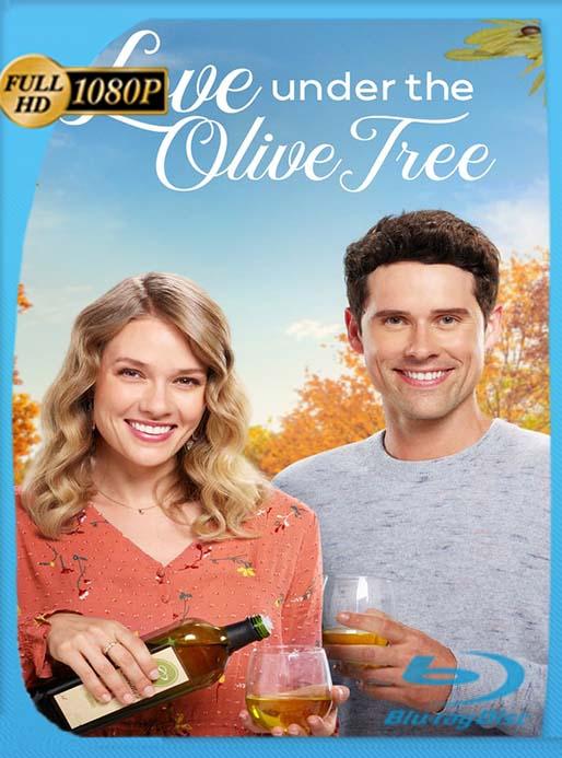 Love Under the Olive Tree (2020) Star WEB-DL 1080p Latino [GoogleDrive] [tomyly]