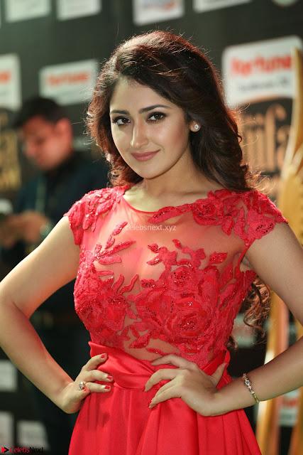 Saisha looks Glamorous Super cute in Transparent Red Gown at IIFA Utsavam Awards 004.JPG