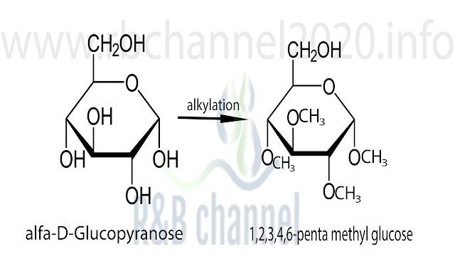 تفاعل الكلة الغلوكوبيرانوز الى 1,2,3,4,6-penta methyl glucose