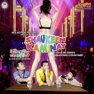 Shaukeen Kaminay (2016)