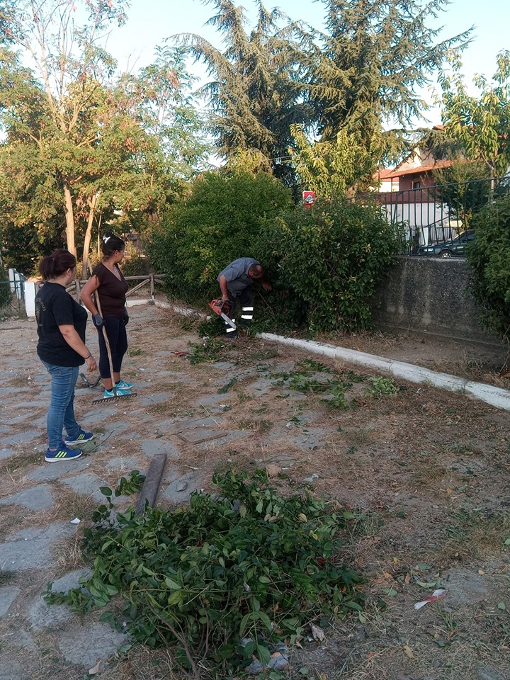 Συνεχίζονται οι εθελοντικές δράσεις στο Δήμο Αριστοτέλη -Δημοτικό Σχολείο Αρναίας (φώτο)