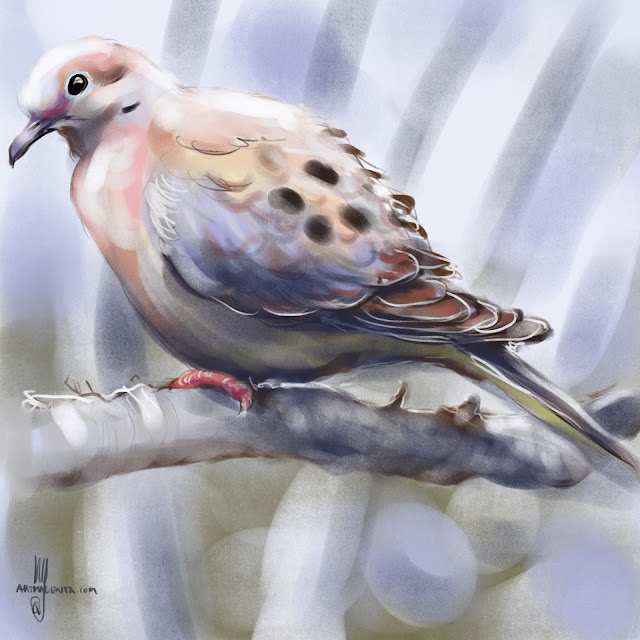 Mourning Dove bird painting by Artmagenta