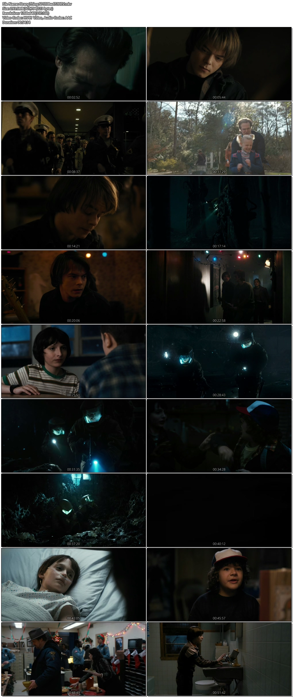Screenshots Of Hindi Dubbed Show Stranger Things 2016 Season 01 Complete All Episodes 300MB 720P HD