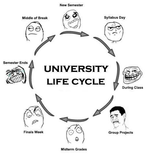 M.O.O.K.: My Uni Life start!!