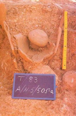 restos cerámicos hallados en Tejada la Vieja