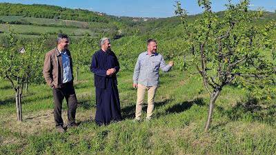 voćnjak manastira Drača