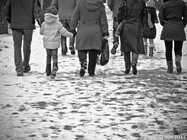 Paşi pe zăpadă - Iaşi - Grădina Copou- blog FOTO-IDEEA