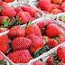 Φράουλες : Οι καλύτεροι τρόποι για τις διατηρήσετε για καιρό