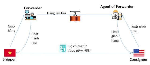 quy-trình-giao-nhận-với-mbll-va-hbl