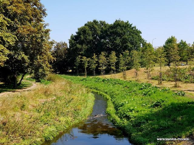 Warszawa Warsaw Mokotów park parki teren zielony Dolinka Służewiecka drzewa strumyk