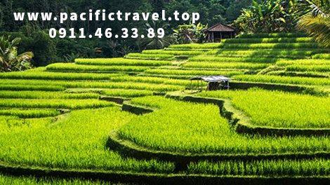 Cẩm Nang Tham Khảo các kinh nghiệm khi đi du lịch Thái Lan hiện nay