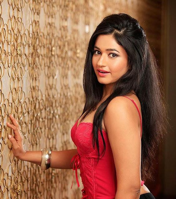 Poonam Bajwa Hot And Sexy Photos