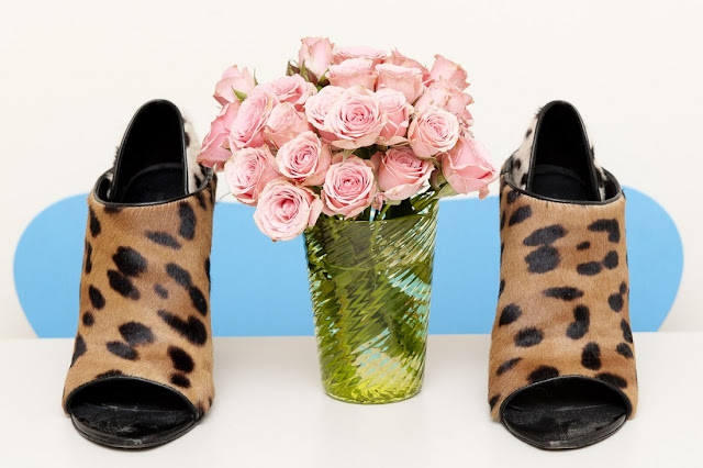 shoes alxander wang leopard print Sarah Brown Beauty Director Vogue New York